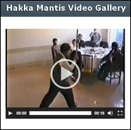 Hakka Southern Praying Mantis Kung Fu
